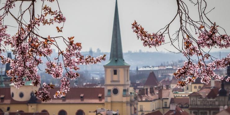 Чехия, назад в детство